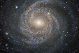 Физики заявили о возможном открытии пятой силы природы
